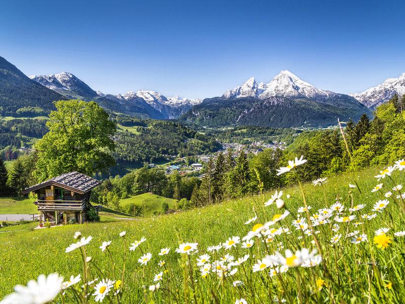 Almen und Berge in der Umgebung