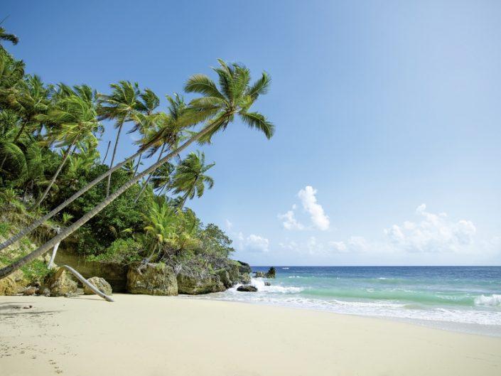 Amanera Dominikanische Republik - Traumhafter Karibikstrand