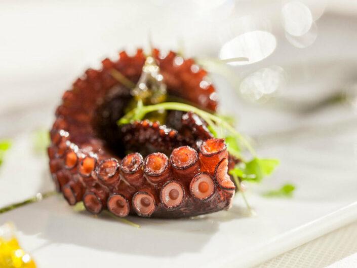 Meeresfrüchte ... lecker ...