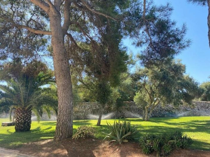 Antic Menorca Erwachsenenhotel - Im Garten
