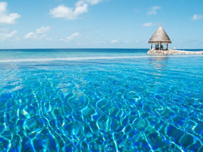 Taj Coral Reef Malediven - Im Infinitypool mit Meerblick
